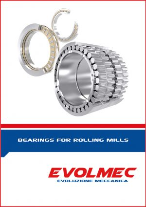 EVOLMEC - Bearing_for_rolling_mills-1